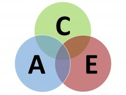 ACE - 3 key digital marketing skills needed in small business