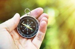 Building a Purpose Driven Business: Purpose Beyond Profit