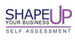 Shape Up Your Business Self Assessment